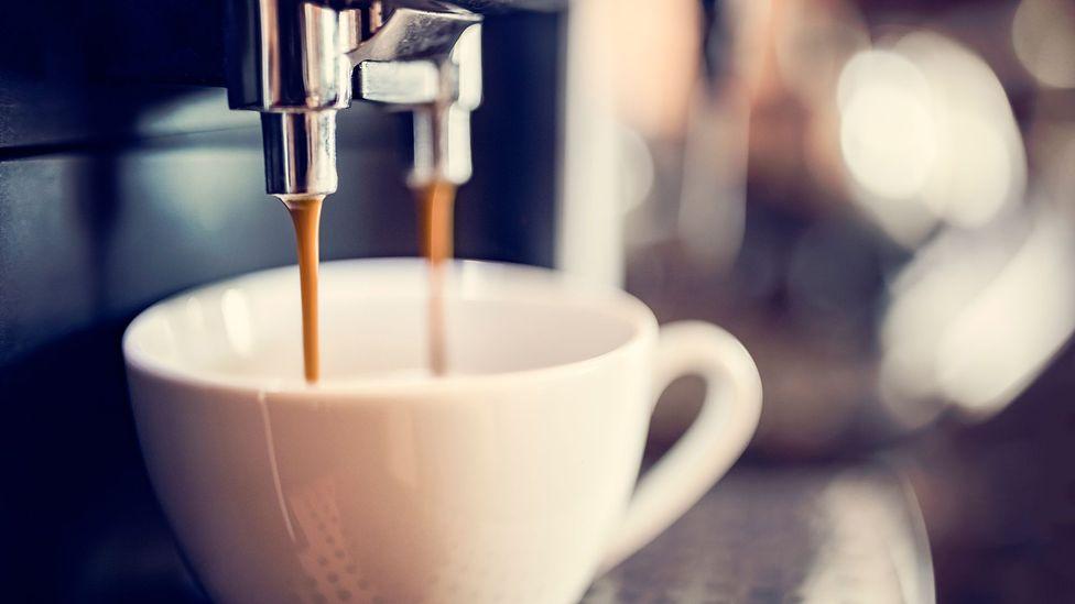 Nectar of Life Gourmet Organic Coffee